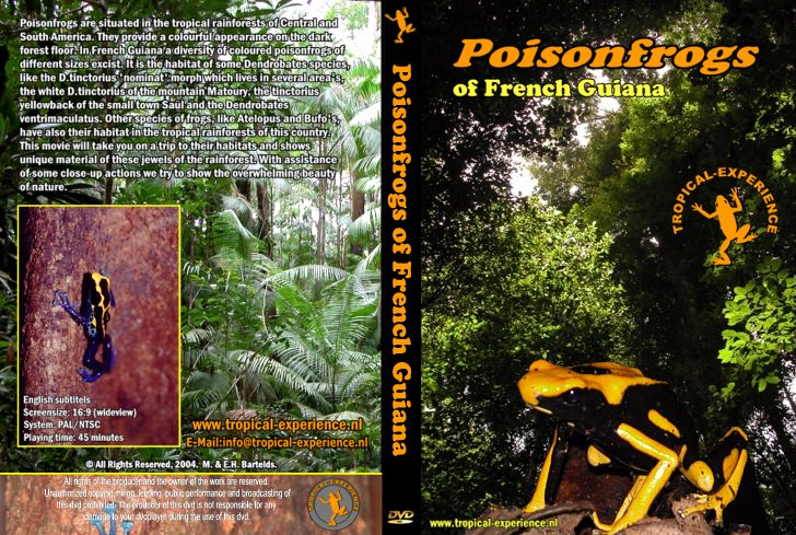 Poison Frogs of French Guiana